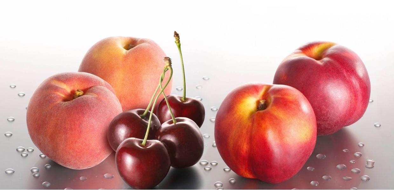 High quality fresd fruit import & Export | Wilko Fruit BV
